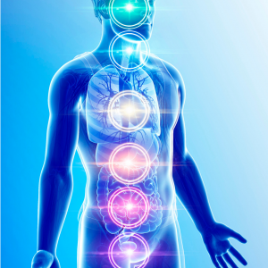 chakra course, what are chakras, chakras in the physical body